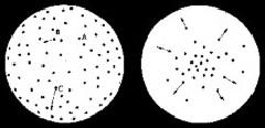 Modelo de la expansión del Universo