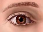 Ver Los ojos