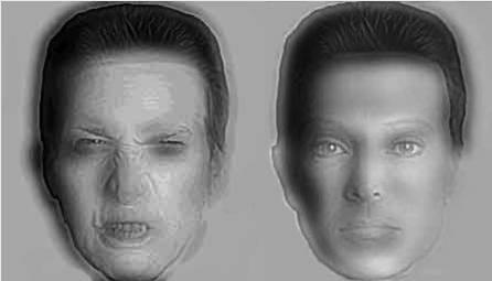 Entorna los ojos y verás cómo cambia el semblante de ambos rostros...